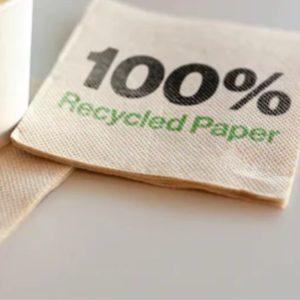 Ovatta riciclata ECO